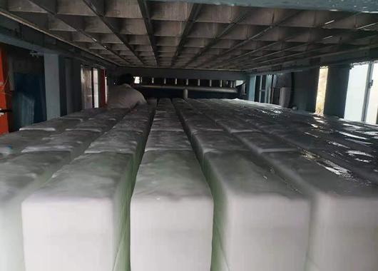 莆田10吨直冷式块冰机案例