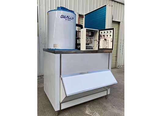 福建某食品厂2吨片冰机案例
